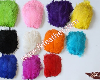 """6""""-8"""" Ostrich Feather"""