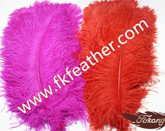 """22"""" - 24"""" Ostrich Feather"""