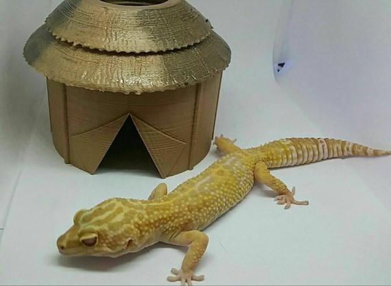 Small or Medium 3D Printed  Reptile Igloo