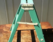 Vintage Wood Step Stool Painted Green dubs as Plant Stand or Shelving