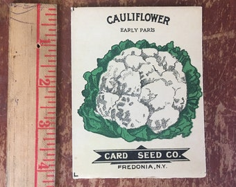 Cauliflower, Early Paris. Fredonia Seed Card Co. Lithograph 1910 Empty Seed Packet