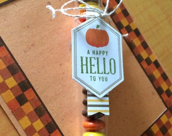 Thanksgiving/Fall Test Tube Candies-Set of 8