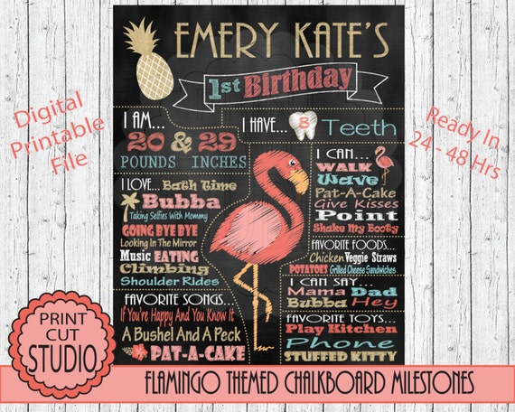 Flamingo Birthday Board Change the Sections! Printable DIGITAL FILE Girls Tropical Birthday Chalkboard Poster Any Age
