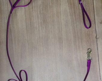 Purple Tug Control Nylon Dog Leash