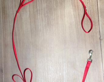 Red Tug Control Nylon Dog Leash