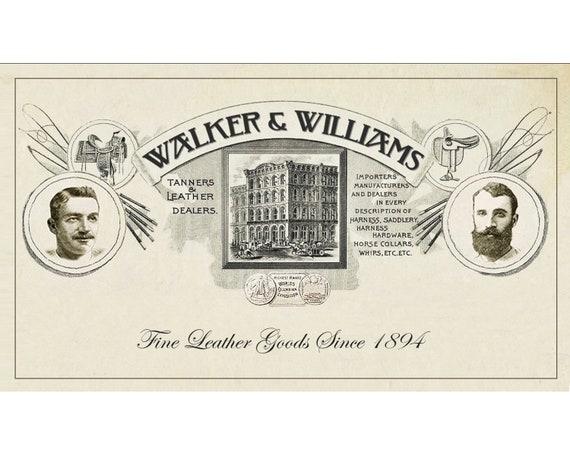 Walker /& Williams GB-126 Bourbon Brown Texas Star /& Skulls Padded Guitar Strap