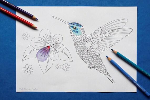 Artículos similares a Colibrí / flor de pájaro tropical colibri para ...