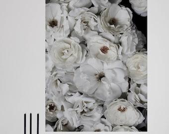 snow white - fine art digital print - hahnemuehle fine art photo rag - 50 x 70 cm