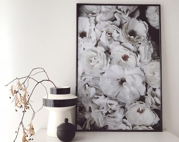 Roses - Fine Art Print