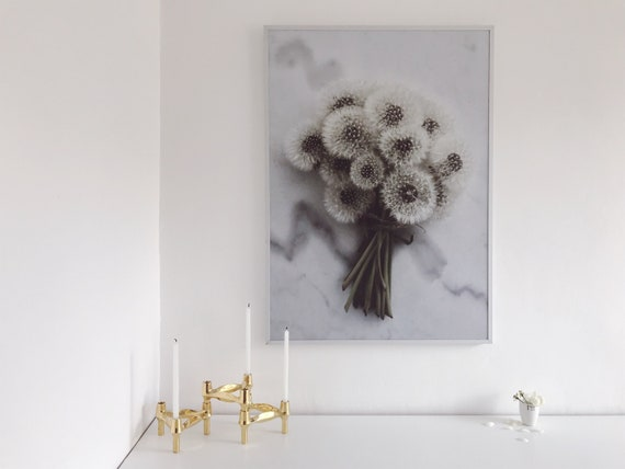 Dandelion on marble