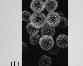 Dandelion - Fine Art digital print