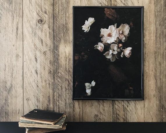 Moody roses - Fine Art print