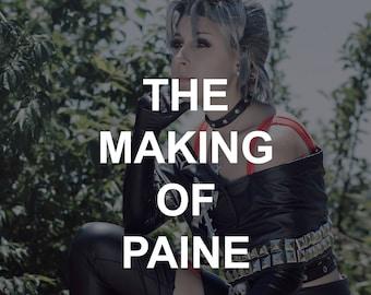 Paine Work Log
