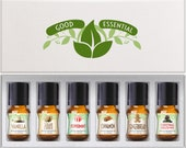 Winter Essential Premium Grade Fragrance Oil Set of 6 - Scented Oils - 5ml - Great for Candle Making, Soap Making, Slime, Diffusers