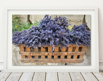 Lavender Flower Provence France Rustic Decor Gardening Gift French Garden Colourful Flowers Europe Travel Floral Box Paris Photography