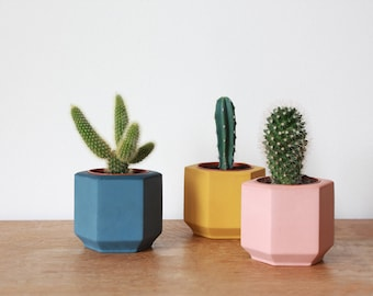 Set of Three Small Coloured Hexagon Planters perfect for Cactus or Succulent // Colourful Plant Pots // Blue / Pink / Yellow - Handmade