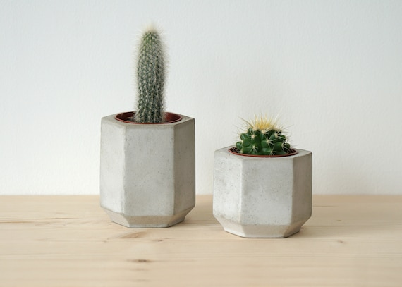 Medium Hexagonal Concrete Planter perfect for a Cactus or Succulent Plant  Concrete Plant Pot Handmade