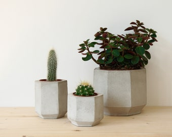 Set of Three Geometric Concrete Planters perfect for Cacti and Succulent Plants // Concrete Plant Pots - Handmade