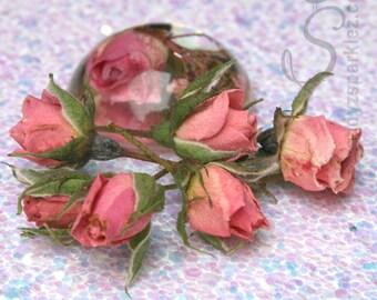 Roses, Dried tiny Dark Pink Rose Buds for Resin Art Jewelry, Floral crafts roses, SZS1002