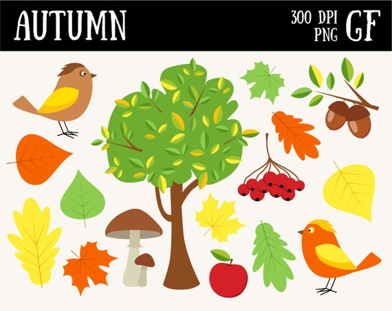 Herbst Cliparts Digitale Clipart Herbst Herbst Zum Etsy