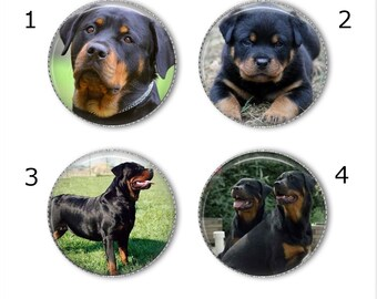 Rottweiler magnets or pins - Choose your own set of 4! bfa5b67a20b