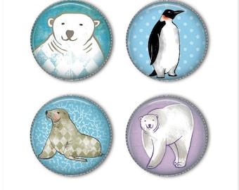 Winter animals magnets or pins, Polar bear, Penguin, Seal, refrigerator magnets, fridge magnets, office magnets