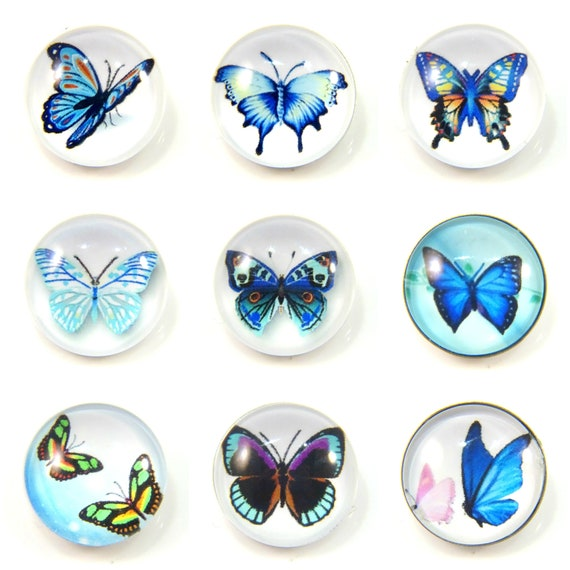 Multi Colored Butterfly Glass 20mm Snap Charm Button Jewelry For Ginger Snaps