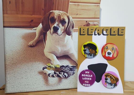 Cute Birthday Gift for a Dog Lover Warning Beagle Owner Mug