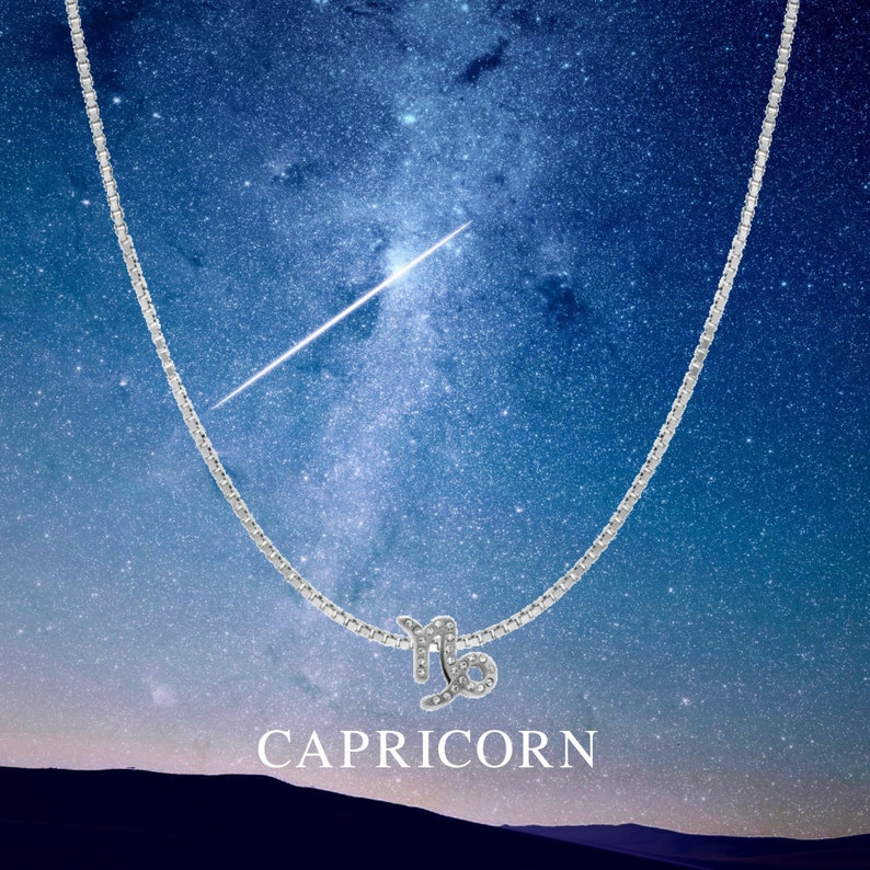 Capricorn Necklace - Zodiac Sign Necklace - Capricorn zodiac astrology  necklace - Capricorn birthday-Personalised gift-Silver Bead Necklace