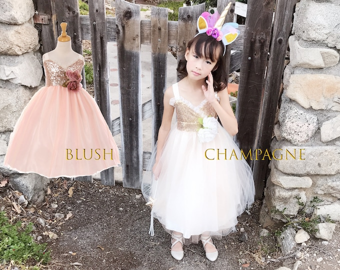 Featured listing image: Baby Toddler to Girl Teen Sparkle Sequins Tulle Sleeveless Tea Length Dress, Wedding Flower Girl Birthday, Blush Pink, Champagne Ivory