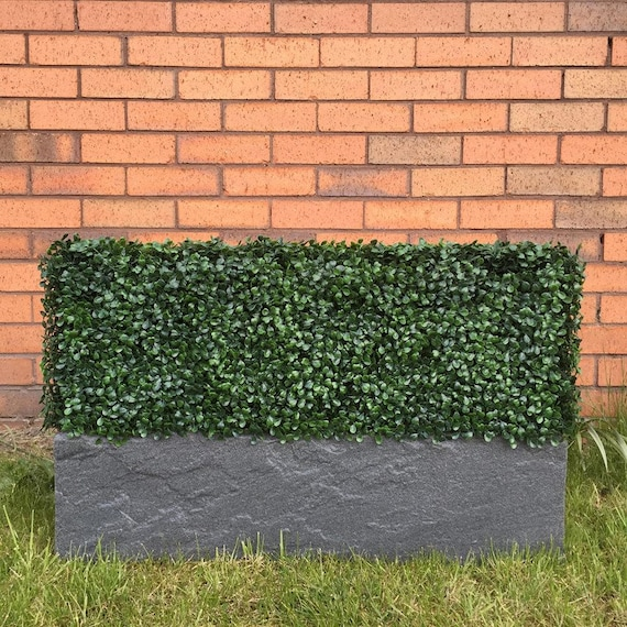 Artificial Instant Boxwood Hedge Planter Etsy