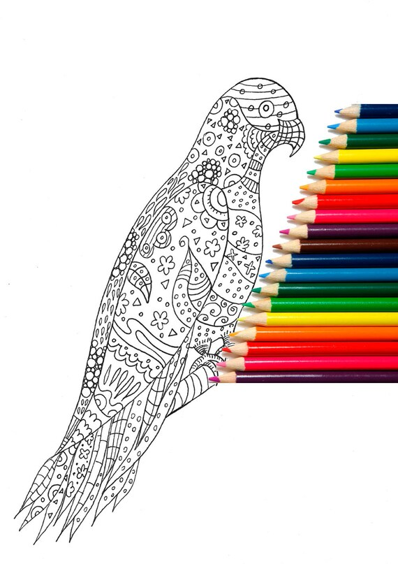 Adult Coloring Pages Printable Coloring Page Colouring Etsy