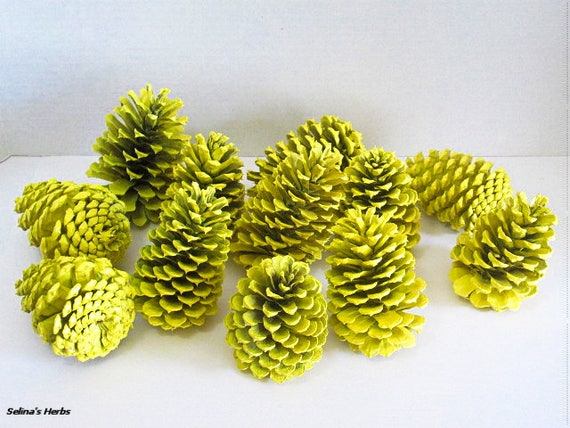 Yellow Painted Pine Cone Decor For Rustic Centerpiece And Arrangement Halloween Thanksgiving And Fall Table Mantle Display Craft Supply