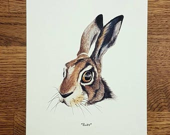 Hare - Wildlife portrait - A5 Fine Art Print - Limited Edition of 25