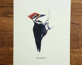Woodpecker - Wildlife portrait - A5 Fine Art Print - Limited Edition of 25