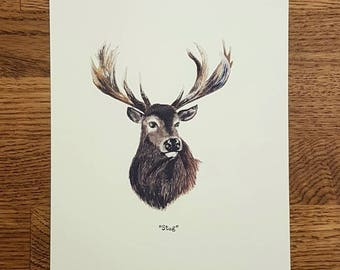 Stag - Wildlife portrait - A5 Fine Art Print - Limited Edition of 25