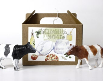 Mozzarella and Ricotta DIY cheese kit - multiple batches, organic, handmade, gift box, italian food, cheese making, do it yourself, green