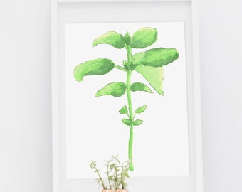 Basil Watercolor - Digital Download