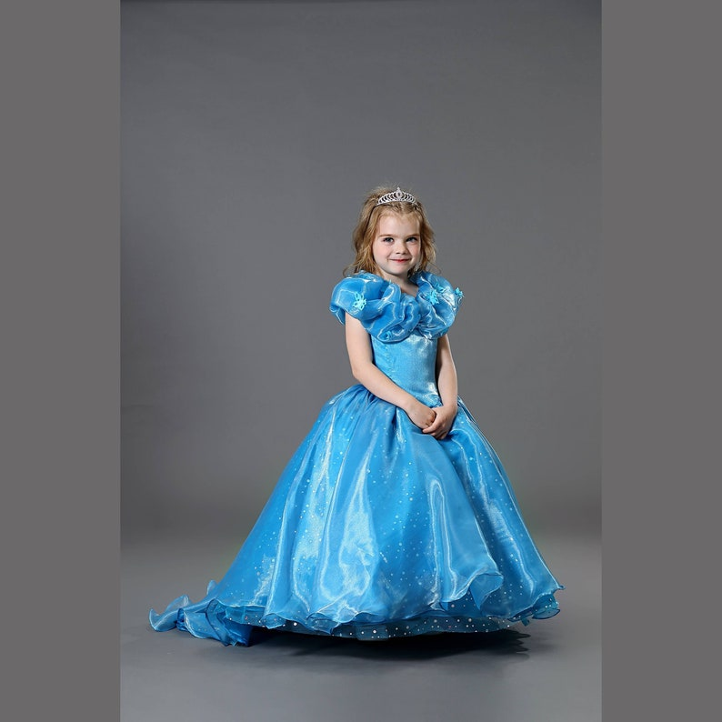 Special Section Cinderella Costume Women Adult Princess Cinderella Dress Halloween Costumes For Women Ball Gowns Blue Prom Dress Custom Home