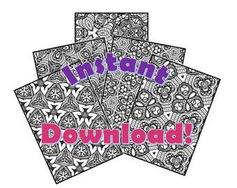 Color More & Stress Less:  Adult Coloring Book download