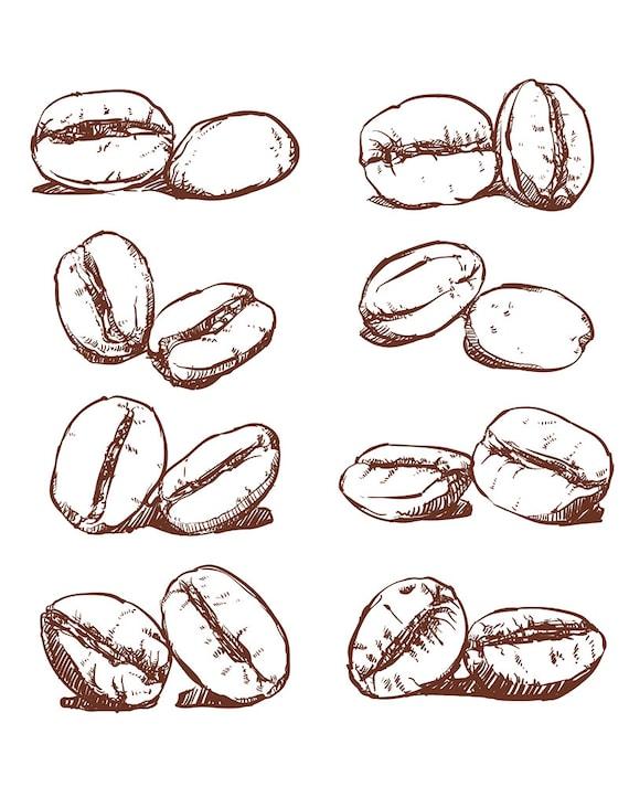 80 off sale coffee bean hand drawn vector sketch of coffee etsy 80 off sale coffee bean hand drawn vector sketch of coffee beans hand drawn coffee vector clipart eps jpg