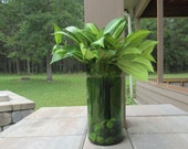 Green Wine bottle planter/Self watering plant/ upcycled wine bottle