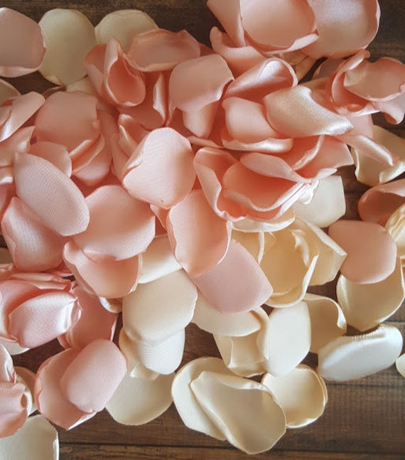 Blush Rose Petals Cream Rose Petals Cream And Peach Wedding Aisle
