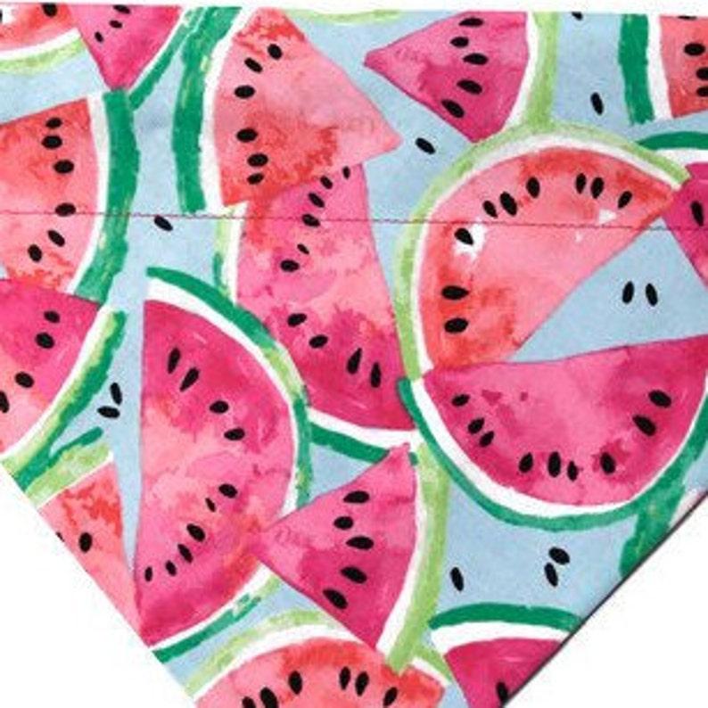 Watermelon BBQ Woof /& Mellon Summer Dog Bandana Over the Collar Picnic
