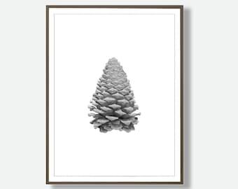 Pine cone Print, Black and White Art, Instant Download, Nordic Wall Art, Pine Cone, Tree Decor, Minimalist Nature Art, Modern Contemporary
