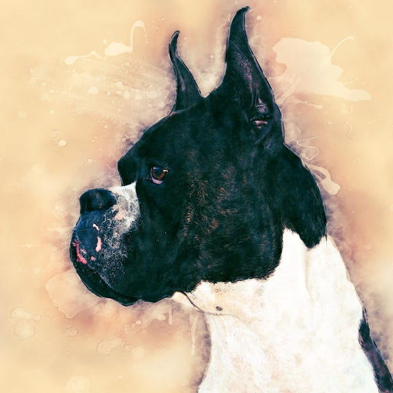 Pit Bull Abstract Watercolor Painting Contemporary Art Print by Artist DJ Rogers