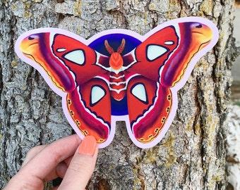 Atlas Moth Vinyl Sticker