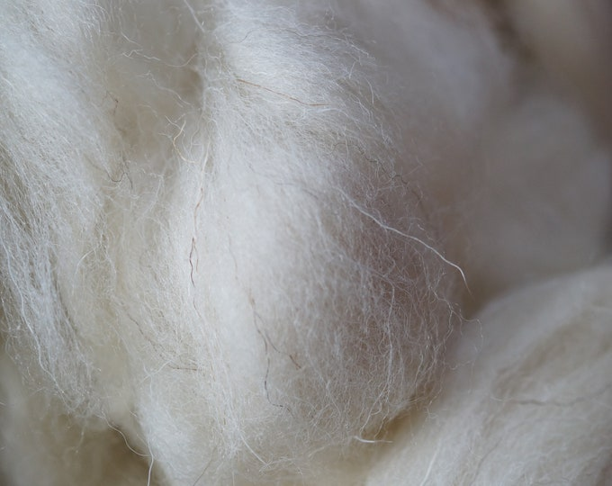 Welsh wool top, white heritage breed, undyed wool for spinning, 8 oz bag