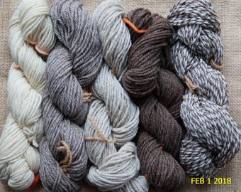 Naturals Collection  contains 500 yds 5 color pack of 3 ply worsted undyed wool yarn from our USA farm free USA shipping