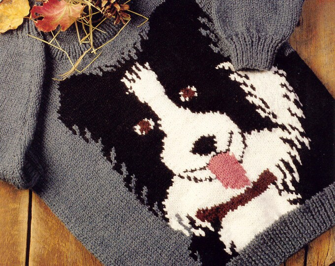 Border Collie knitting pattern book from Bernat family sizing digital or paper